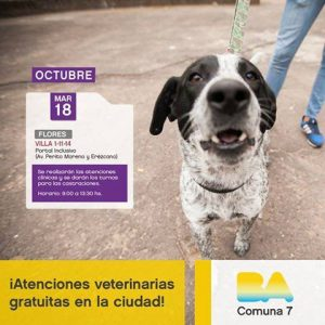 atencion-veterinaria